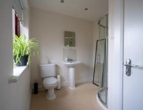 Airbnb 7 Dartmouth Place Ranelagh Dublin 6 Image 5